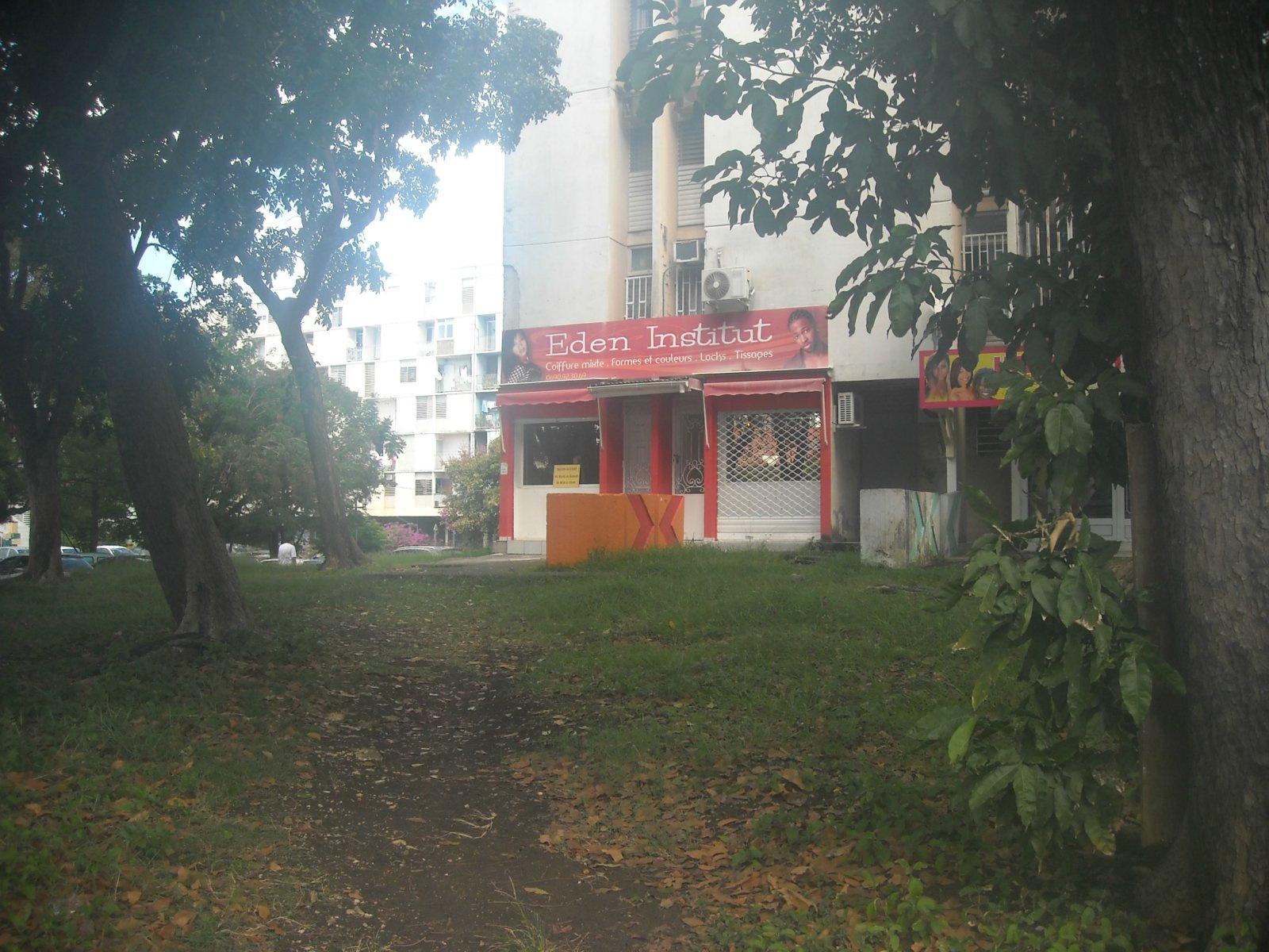 Vente Immobilier Professionnel  Pointe-à-Pitre 97110